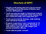 structure of mtfc