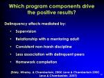 which program components drive the positive results