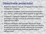 obiectivele proiectului