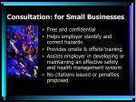 consultation for small businesses