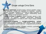 grupe usluga crna gora