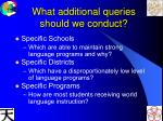 what additional queries should we conduct