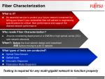 fiber characterization