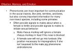 olfaction memory and emotion4