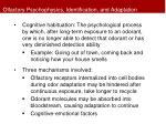 olfactory psychophysics identification and adaptation7