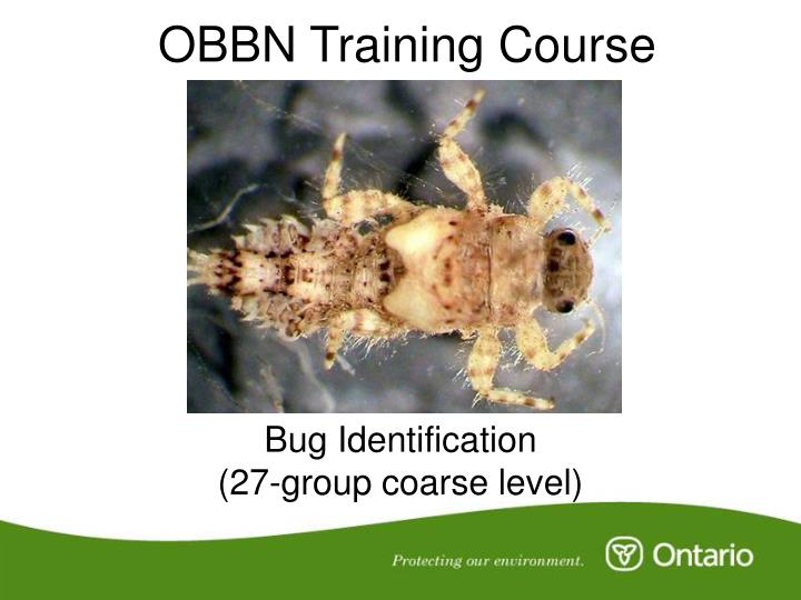 obbn training course n.