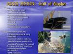 aoos vision gulf of alaska
