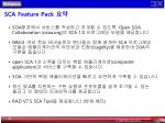 sca feature pack1