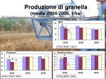 produzione di granella medie 2004 2006 t ha