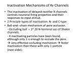 inactivation mechanisms of kv channels