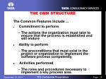 the cmm structure1