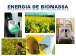 energia de biomassa1