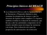 principios b sicos del reach4