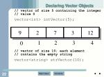 declaring vector objects