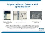 organizational growth and specialization