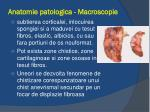 anatomie patologica macroscopie1