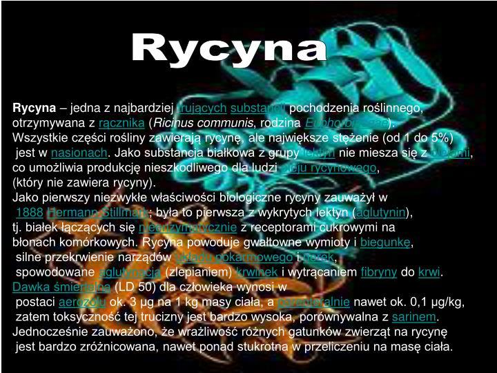 Rycyna