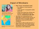 impact of microloans