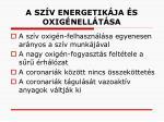 a sz v energetik ja s oxig nell t sa