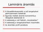 lamin ris raml s