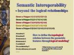 semantic interoperability beyond the logical relationships