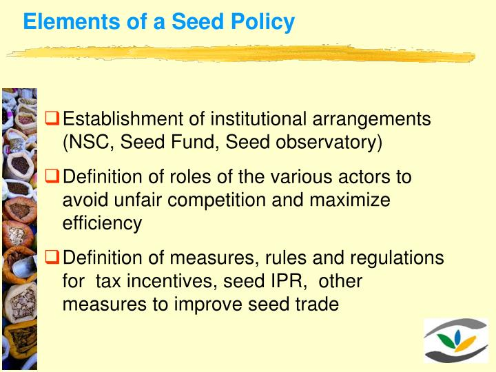 Elements of a Seed Policy