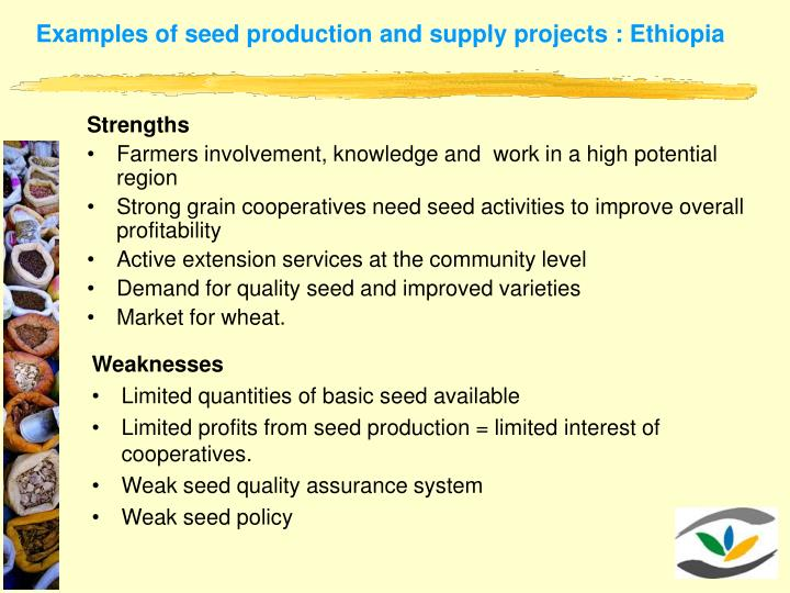 Examples of seed production and supply projects : Ethiopia