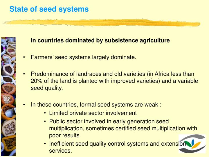 State of seed systems