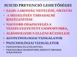 suicid prevenci lehet s gei