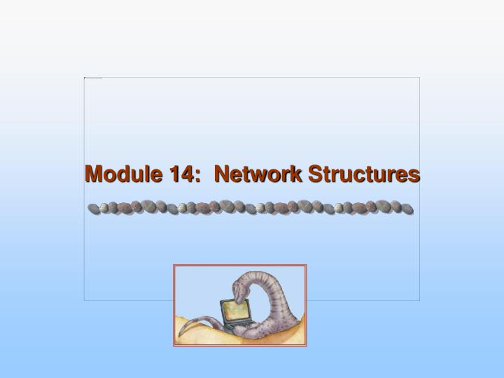 module 14 network structures n.