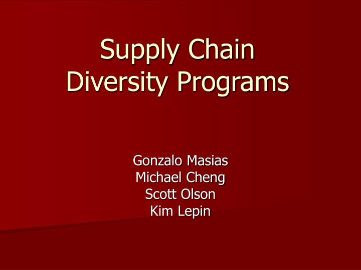 supply chain diversity programs n.