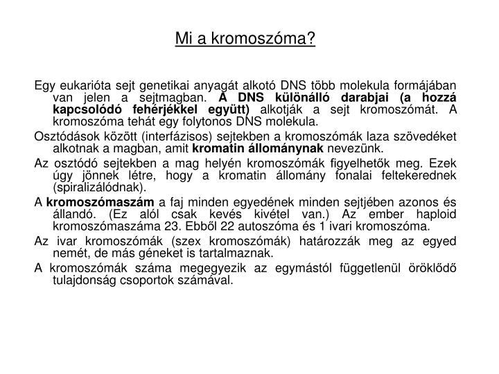 Mi a kromoszóma?