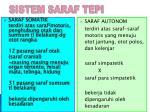 sistem saraf tepi1