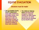 equine evacuation decisions must be made1