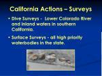 california actions surveys