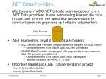 net data providers