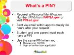 what s a pin