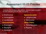 assessment 03 03 preview