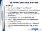 the panel consensus process
