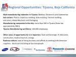 regional opportunities tijuana baja california