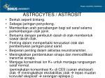 astrocytes astrosit