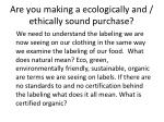 are you making a ecologically and ethically sound purchase