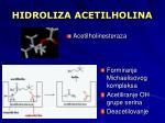 hidroliza acetilholina