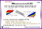 wdm wavelength division multiplex