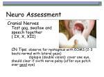 neuro assessment17