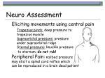 neuro assessment42