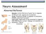 neuro assessment47