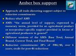 amber box support