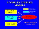 looseley coupled models