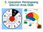 5 upayakan merangsang seluruh area otak